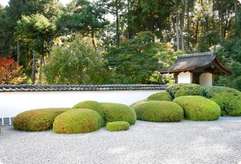גינה בעיצוב יפני